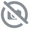 Citron Cassis 50ML - Fruizee